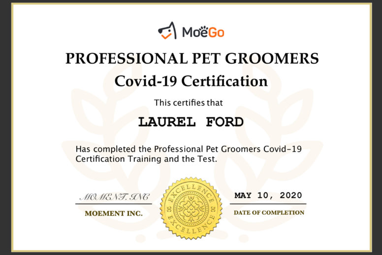 Covid-19 Safety Certification
